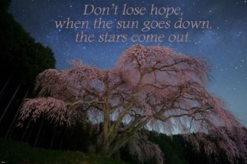 starry night and pink tree INSPIRATIONAL poster quote about hope 24X36