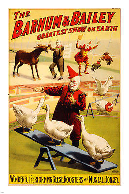 geese ROOSTERS & DONKEY circus poster 24x36 BARNUM & BAILEY 1900 clowns