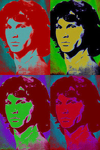 JIM MORISSON celebrity singer POP ART POSTER multiple images bold 24X36 NEW-VW0