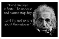 ALBERT EINSTEIN human stupidity quote poster 24X36 funny INSPIRATIONAL New - QW0