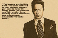 robert downey jr. actor celebrity PHOTO QUOTE POSTER picky little bitch HOT
