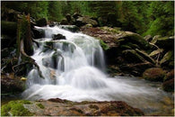 CLASSIC WATERFALL nature photo poster OUTDOORS rocks evergreens 24X36 NEW