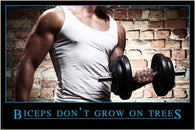 BICEPS DON'T GROW ON TREES inspirational/motivational FITNESS POSTER 24X36