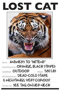 LOST CAT photo poster FUNNY TIGER wild animal KID FRIENDLY unique 24X36 BOLD
