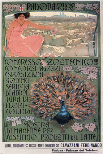 congress husbandry VINTAGE POSTER italy 1903 24X36 bright peacock HOT NEW