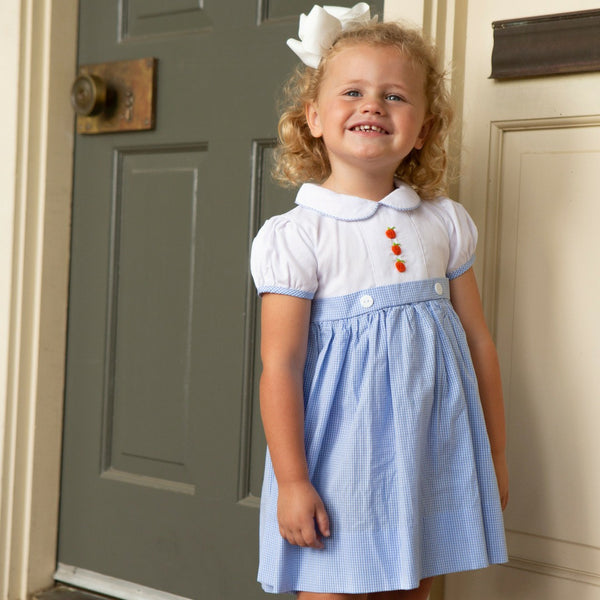 Blue Gingham Pumpkin Dress