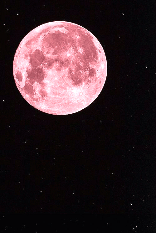 Pink Full Moon April 2019
