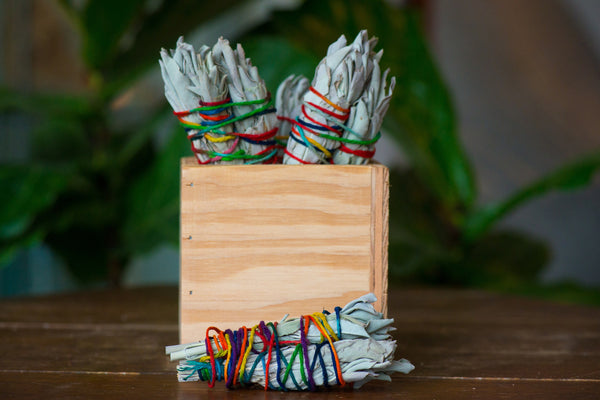 Mini Sage Bundle Trio