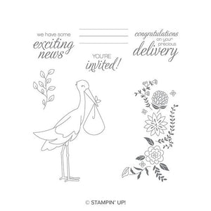 Precious Delivery | Retired Clear-Mount Stamp Set | Stampin' Up!®
