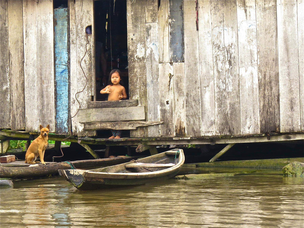 child and dog in wooden home