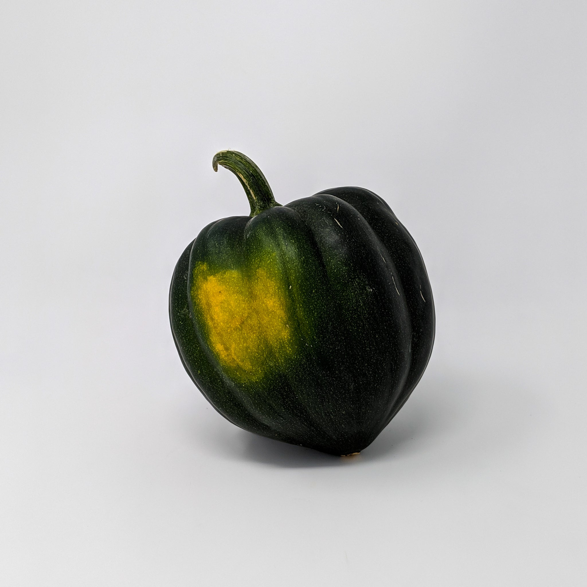 Acorn Squash - Manitoba Grown