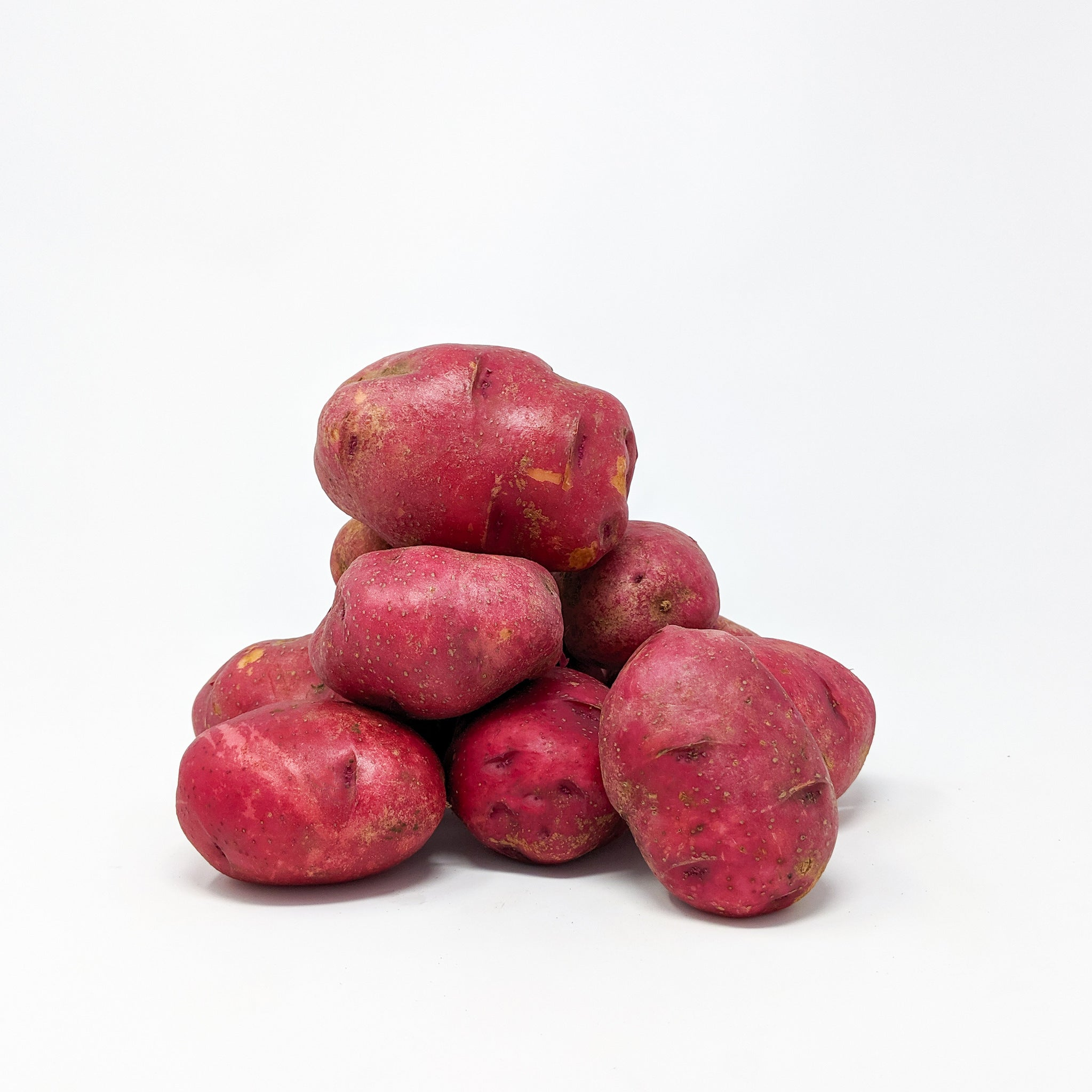 Large Red Potatoes (various weights) - Locally Grown