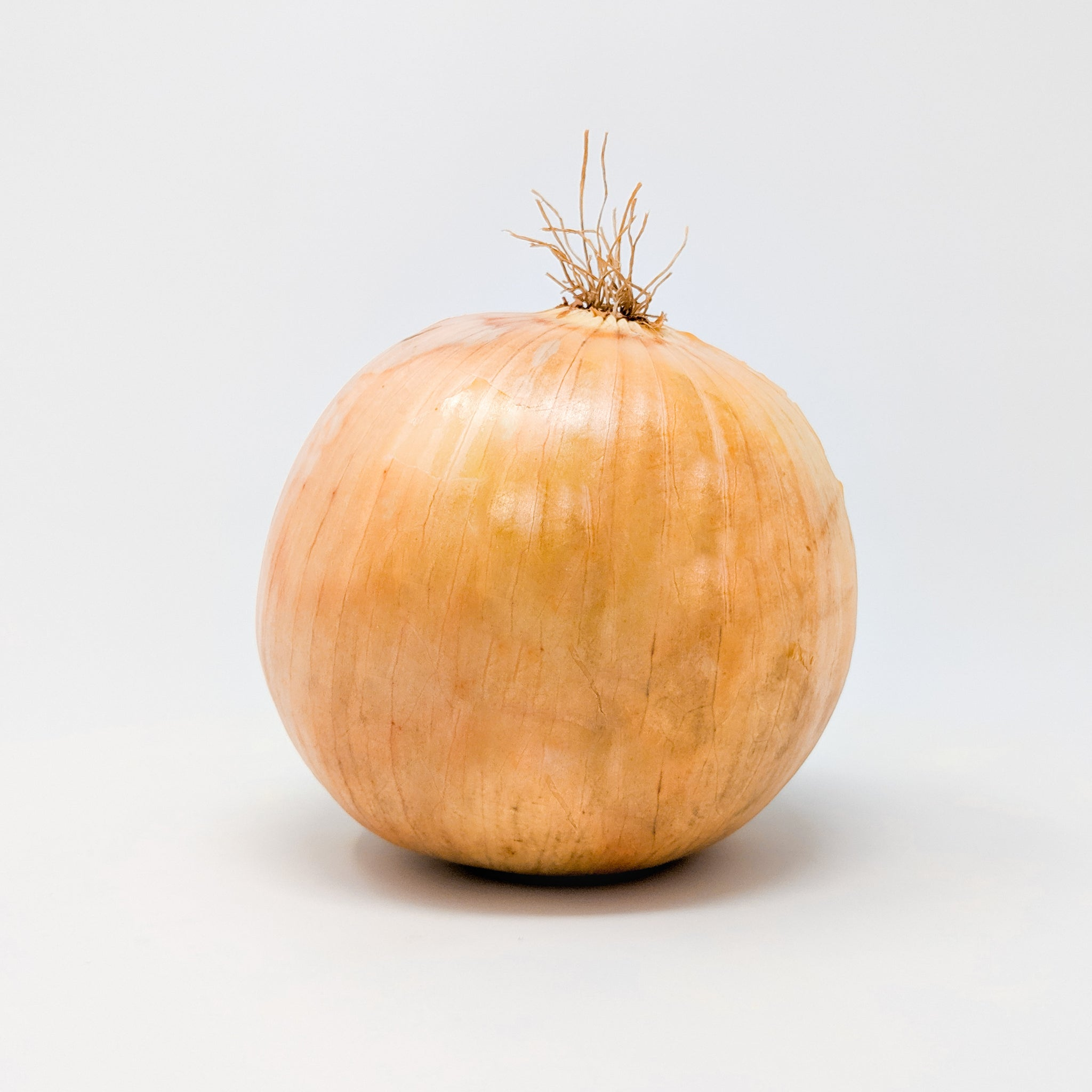 Spanish Onions 5lb - Locally Grown