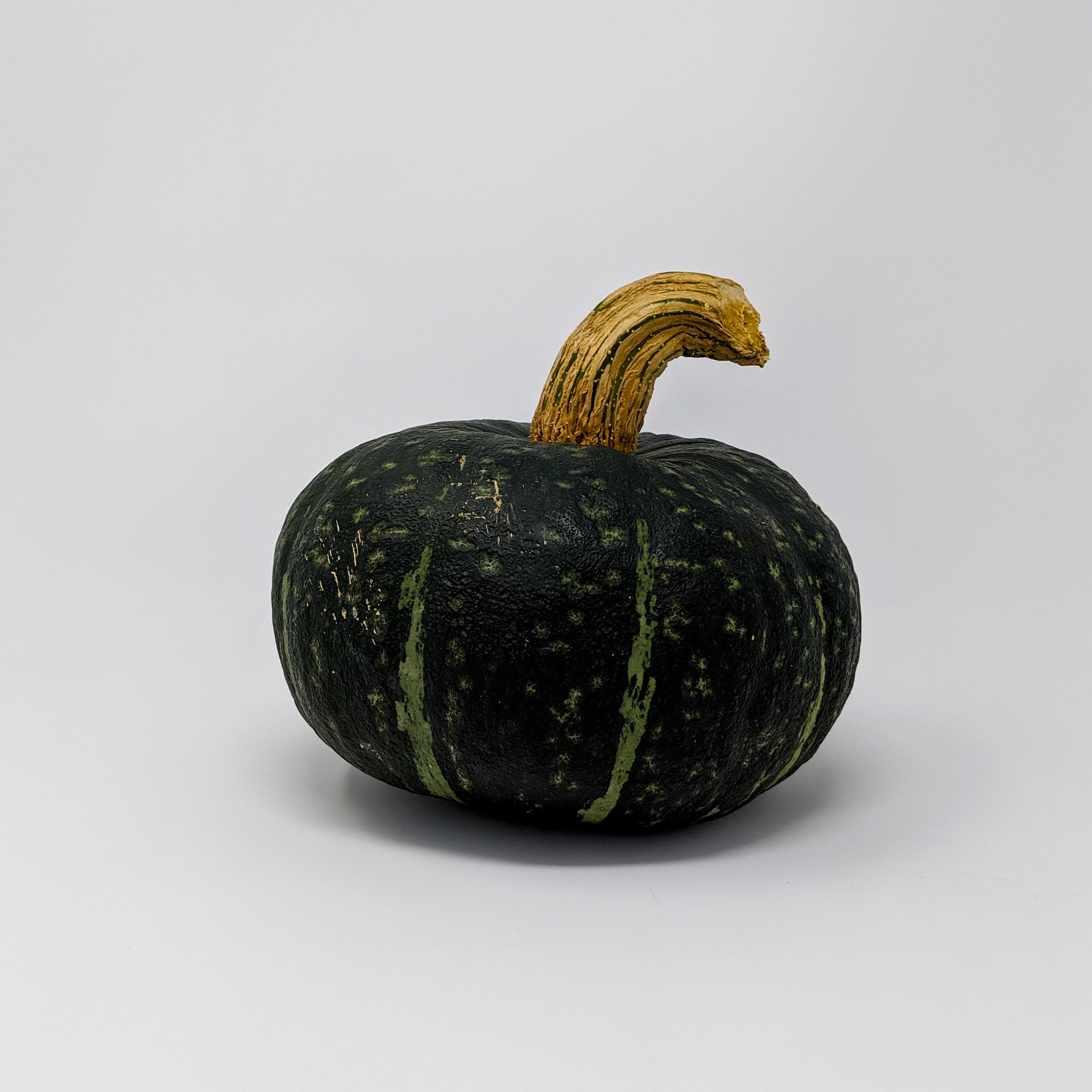 Kabocha / Buttercup Squash - Manitoba Grown