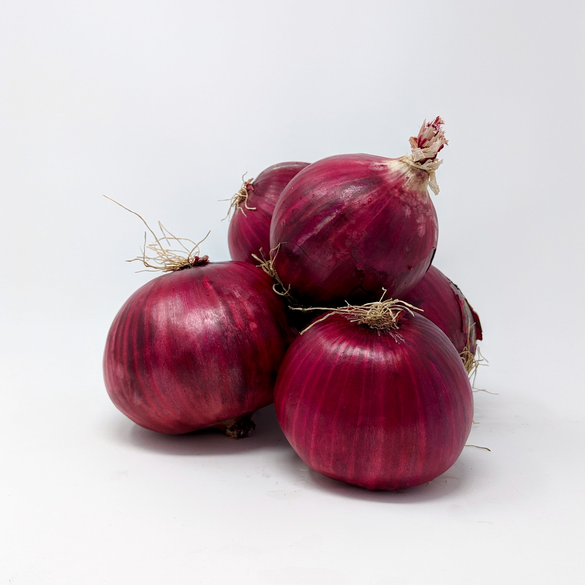 Red Onions 5lb - Locally Grown