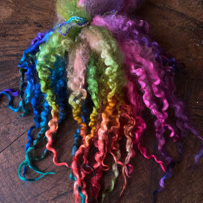 Wool locks for spinning and felting