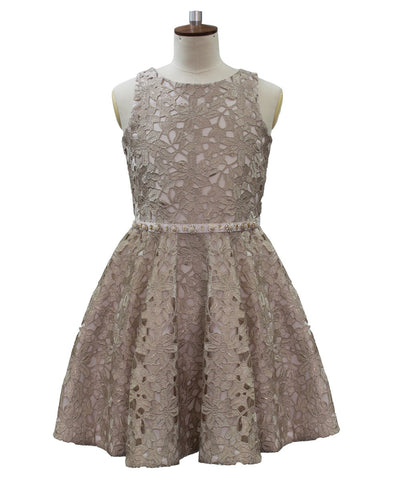 David Charles Adelina Soft Gold Stencil Lace Dress