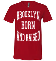 Brooklyn Born & Raised Men's V-Neck T-shirt