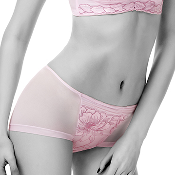 Wonderful Embroidered Lace Panty #11516