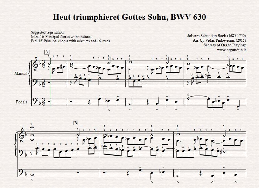 BWV 630 Practice Guide