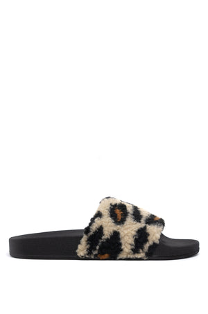 Sunday Morning - Leopard Slides