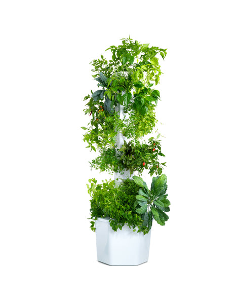Aerospring: The versatile, vertical garden for everyone