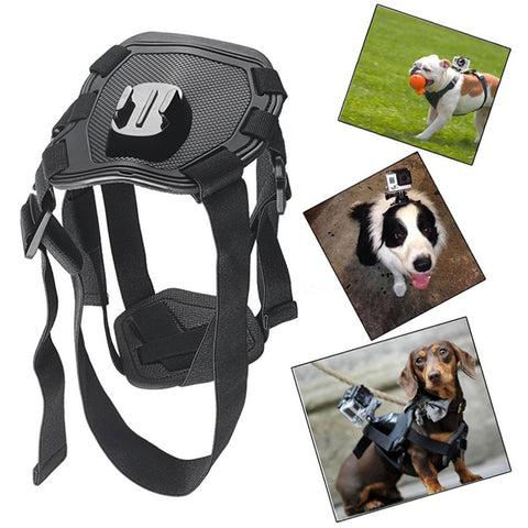 Action Camera Go Pro Dog Harness