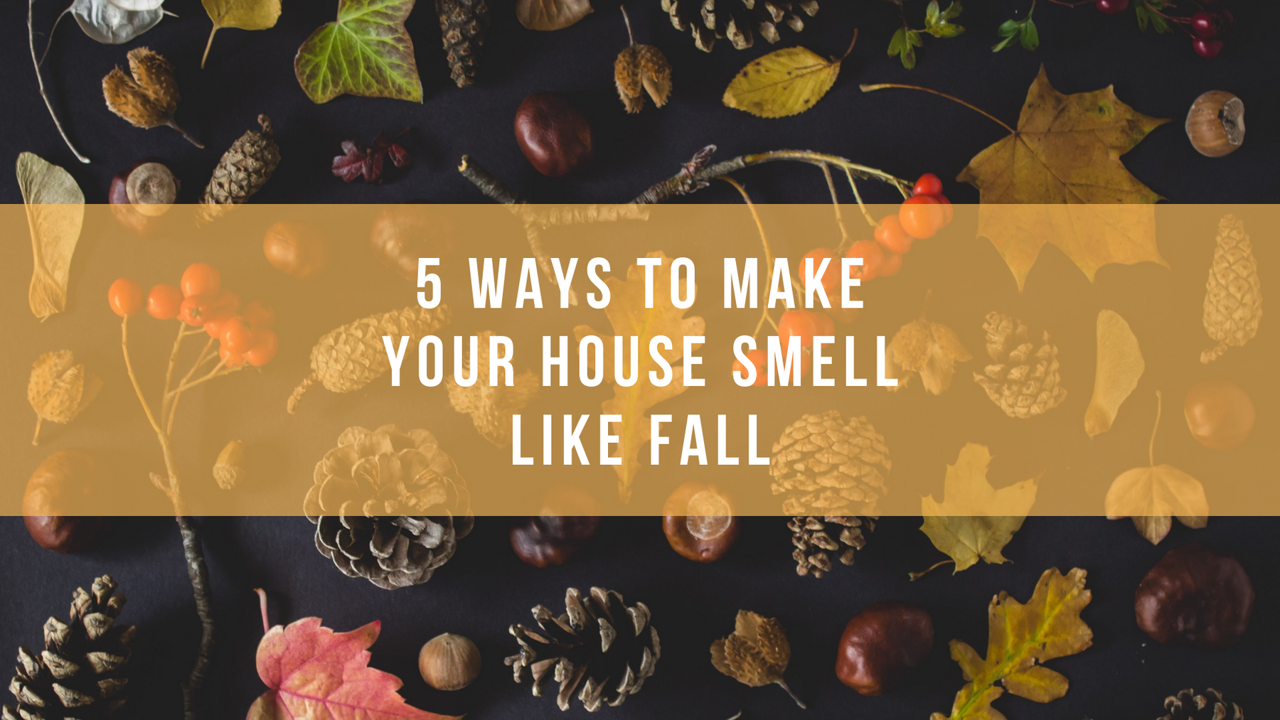 5 Ways To Make Your House Smell Like Fall