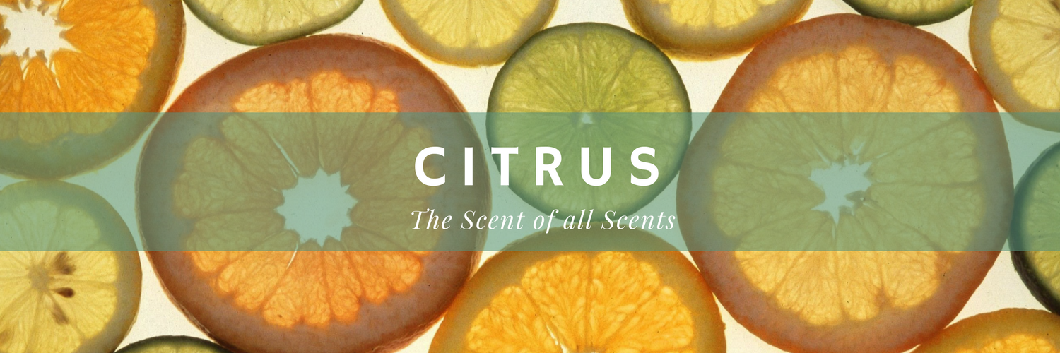 Citrus: Your Guide To The Scent Of All Scents