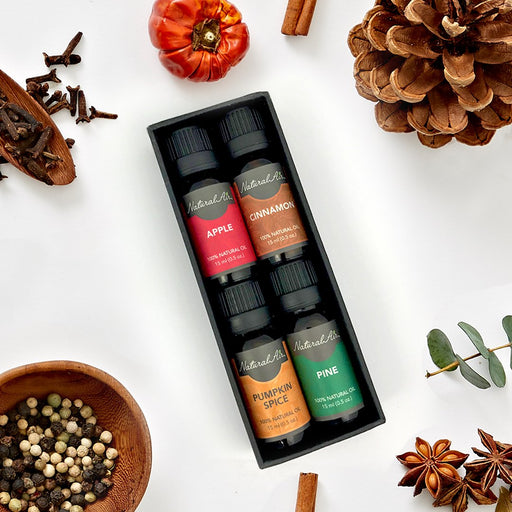 Natural Air™ - Holiday Gift Pack - dollarscentclub