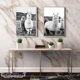 Load image into Gallery viewer, Alpaca Poster Wall Art Canvas Printing