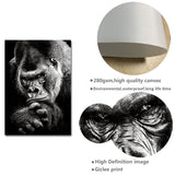 Load image into Gallery viewer, Ape Monkey Canvas Print Poster