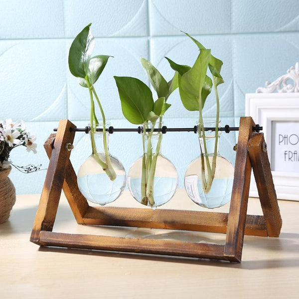 Glass and Wood Plant Hanging Pots