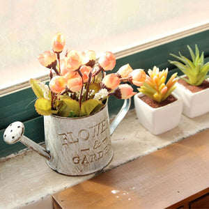 Handicraft Watering Flowerpot Flowerpot InspirExpress Flower & Garden