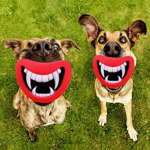 Make Your Puppy Happy Pet Toys Pet Toy InspirExpress Tusk