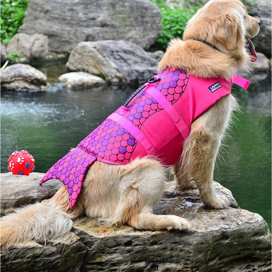 Shark Life Vest For Dogs Pet InspirExpress Mermaid S