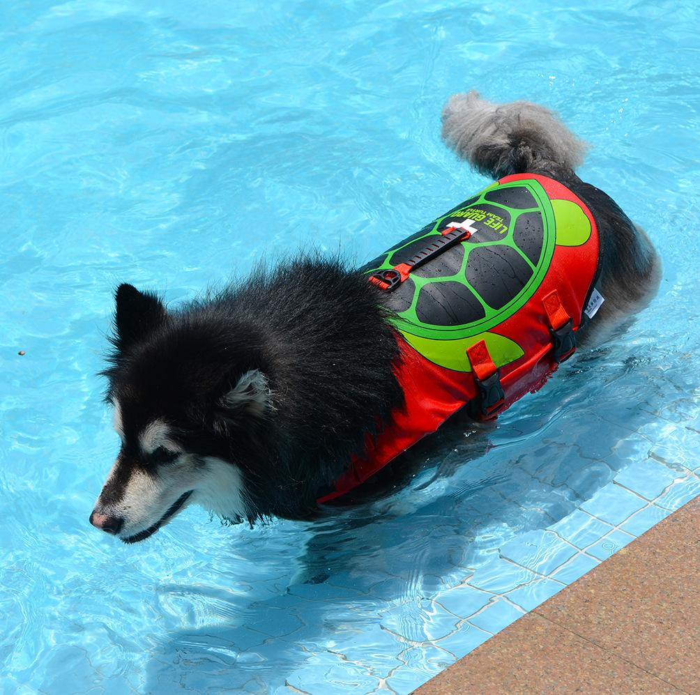 Shark Life Vest For Dogs Pet InspirExpress Turtle S