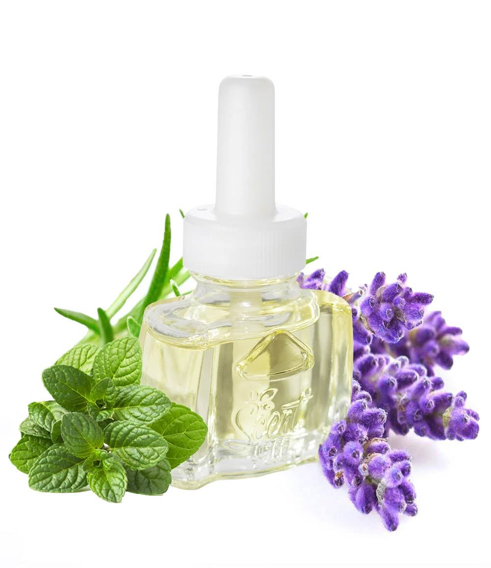 Air Wick Lavender Mint scented oil Plugin Refill