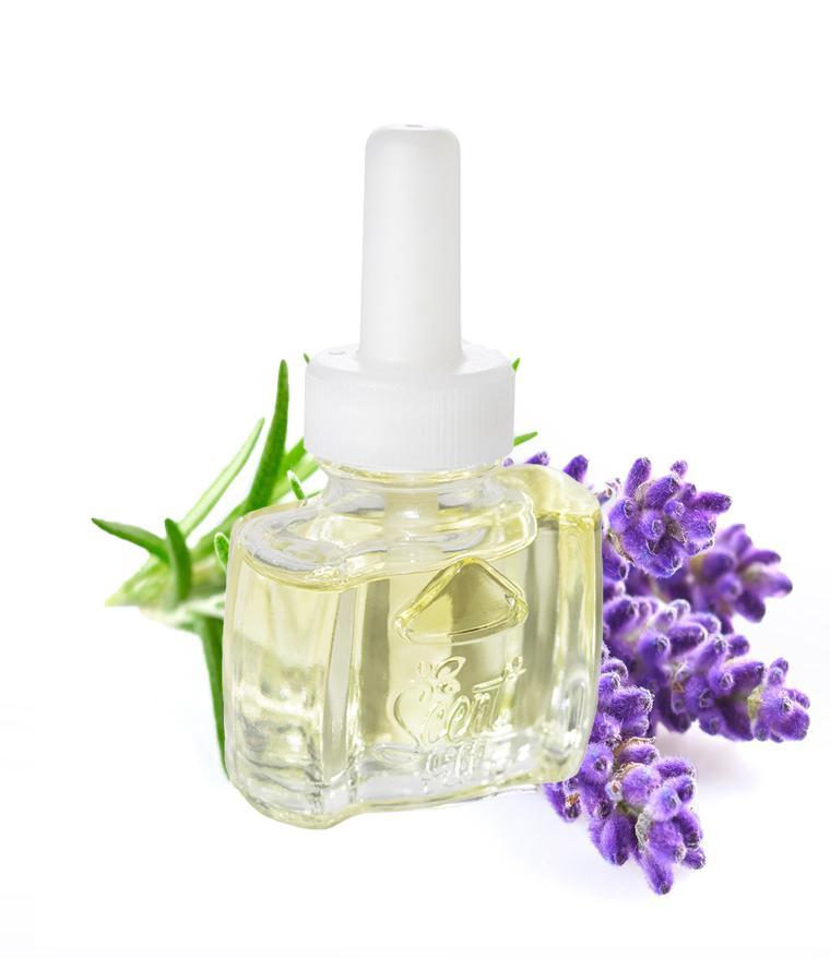 NEW VERSION - 100% Natural Lavender Essential Oil Plug in Refill - Fits Air Wick® and more