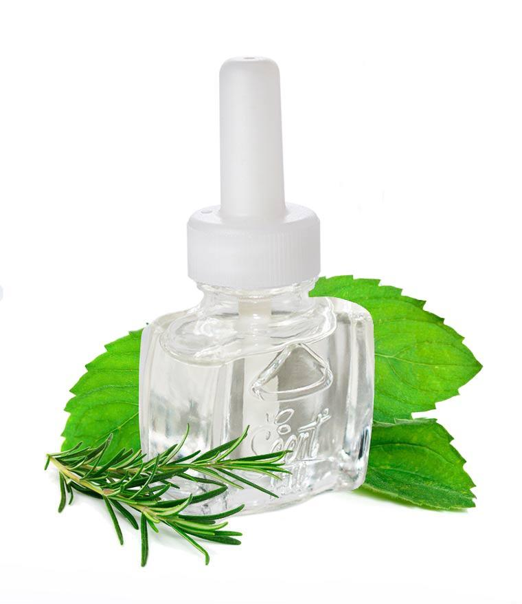 Peppermint and Rosemary plugin air freshener