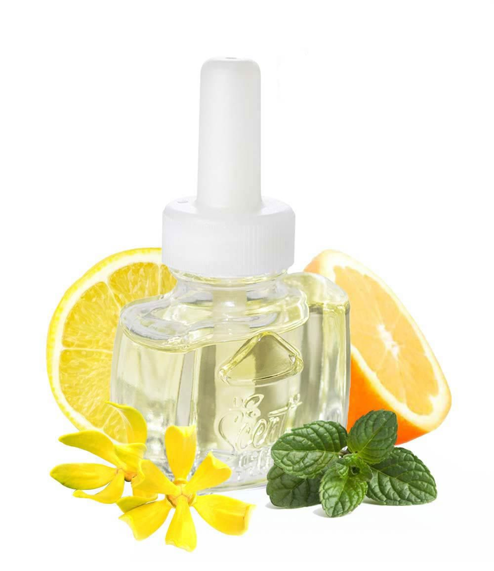 Citrus Floral refill For Air Wick