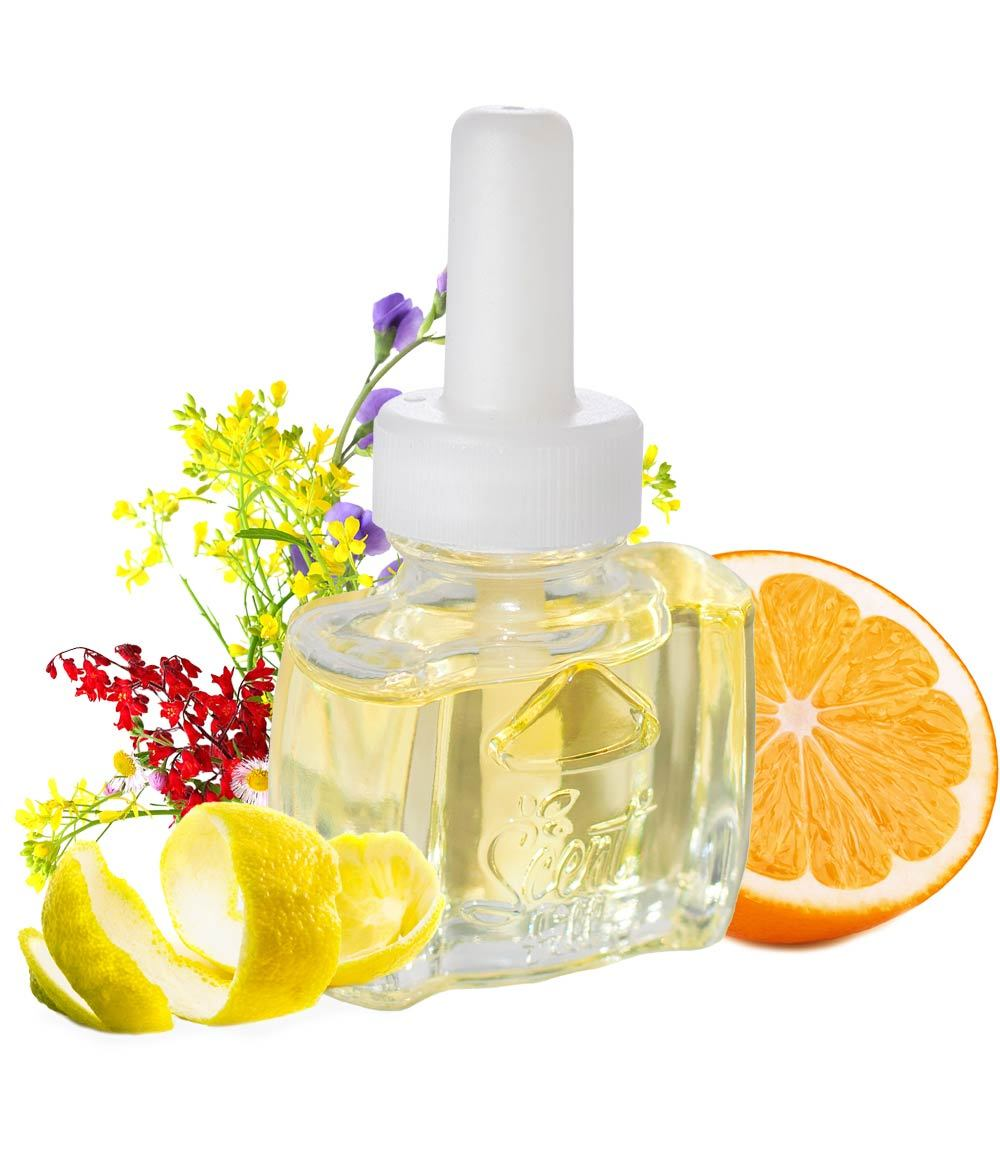 Natural Air Freshener Citrus and Floral Notes