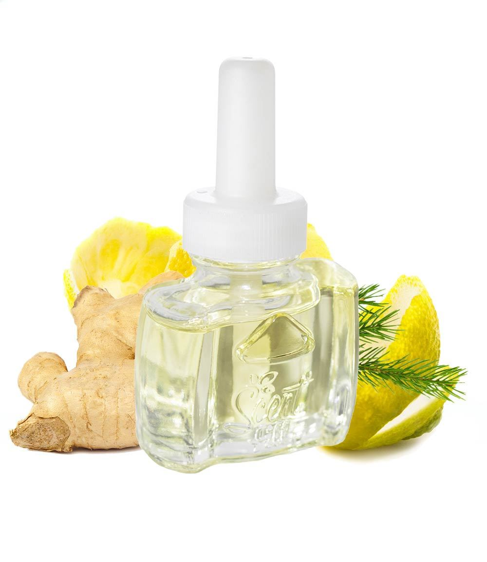 Ginger Plug in air freshener for Air Wick