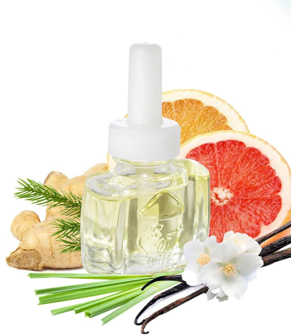 Grapefruit Vanilla Scented Oil refill  air freshener for Air Wick