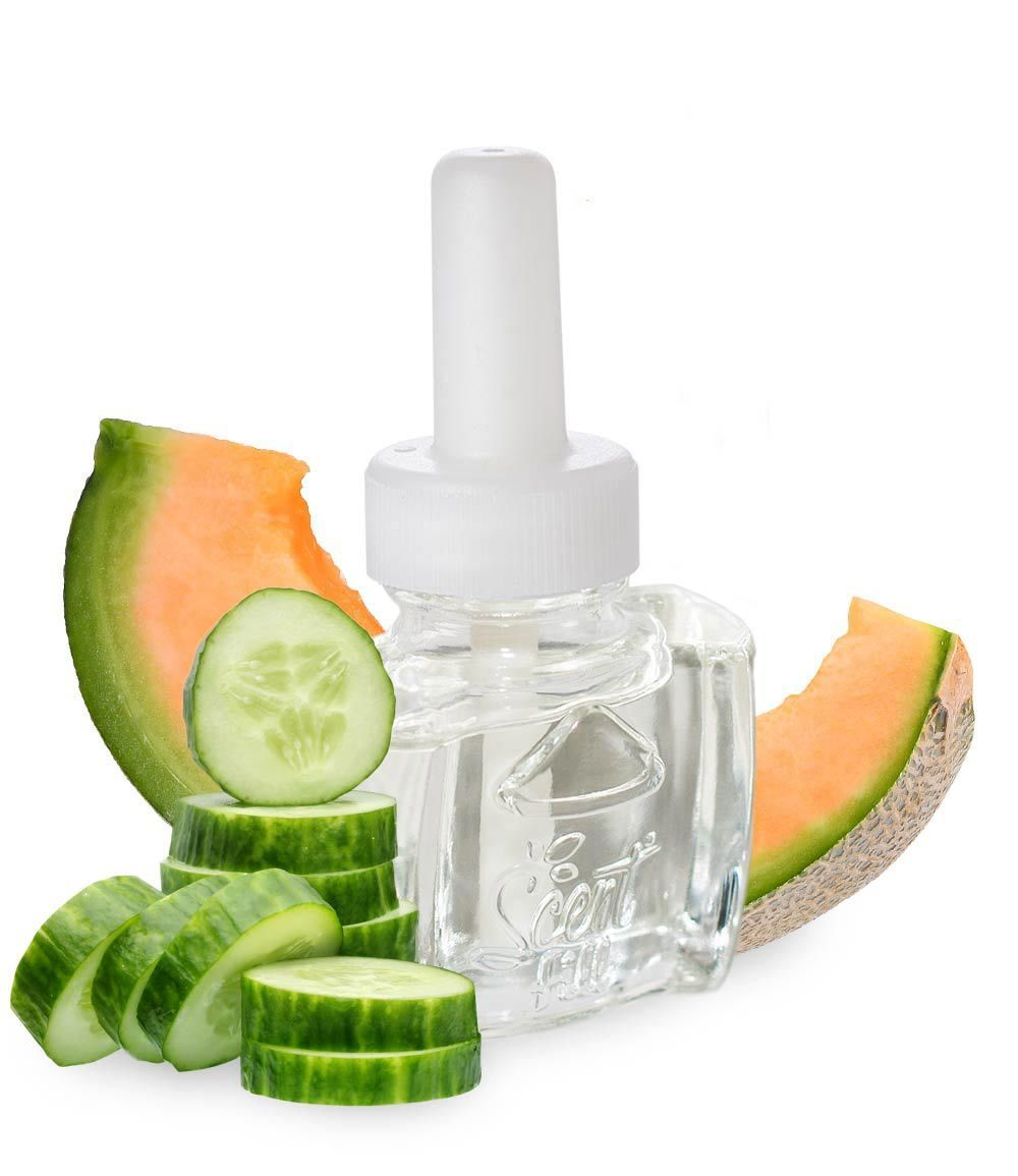 Cucumber Melon Plug in scented oil