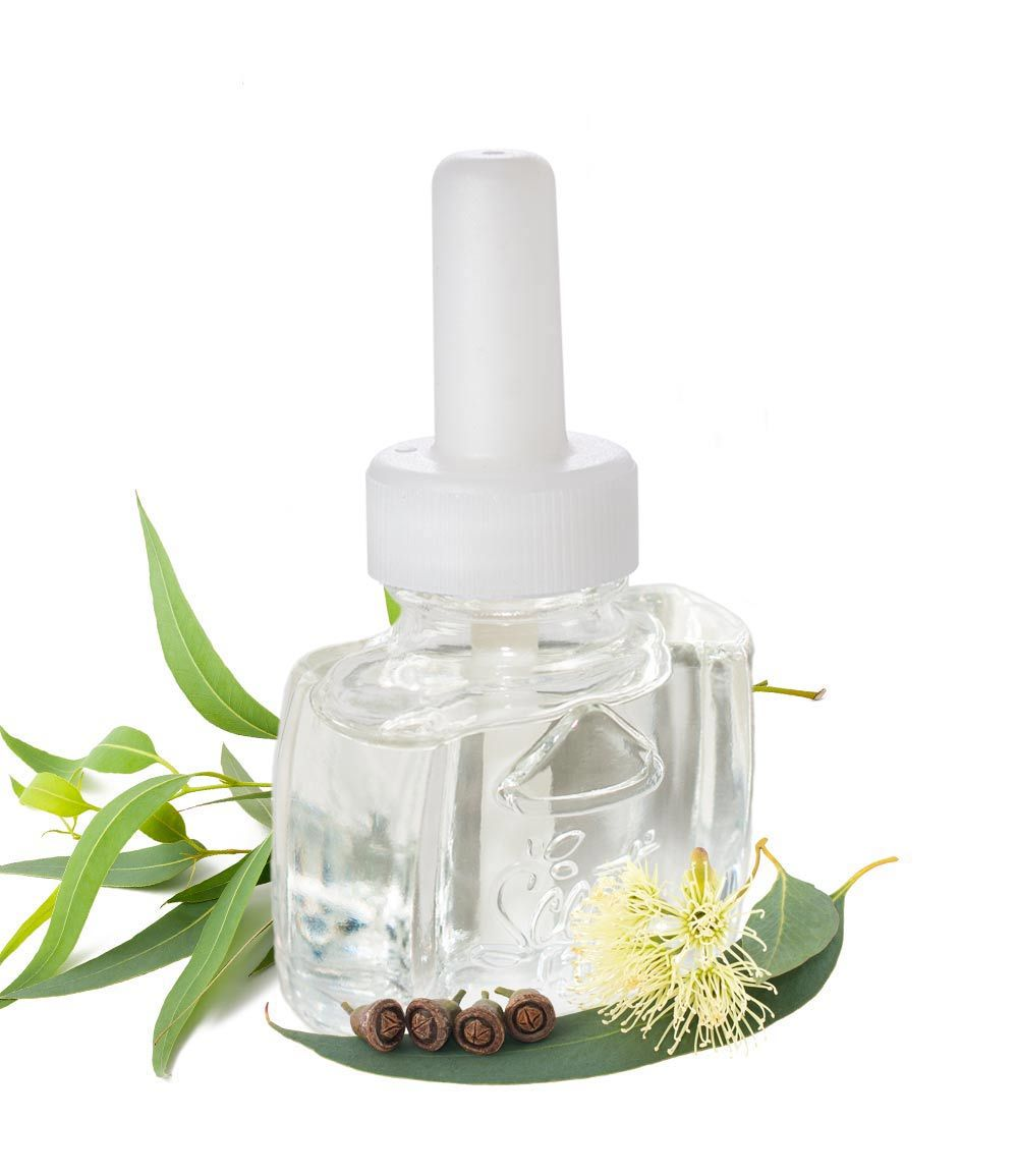 100% Natural Eucalyptus Essential Oil