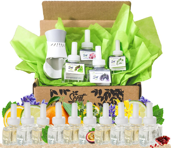 Summer Scents Kit Air Wick Plugin refills