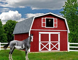 Wood Storage Sheds Roanoke 16 x 32 Barn Style Shed Kit - Sojag Gazebos