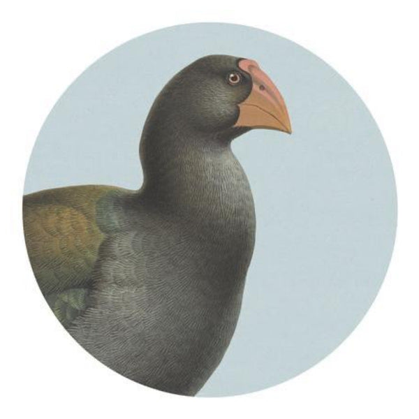 jade kiwi kaikoura native bird placemat takahe