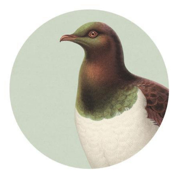jade kiwi kaikoura gifts native bird placemat kereru